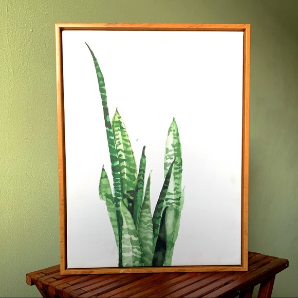 Other - Wall Fashion Succulent Canvas Print